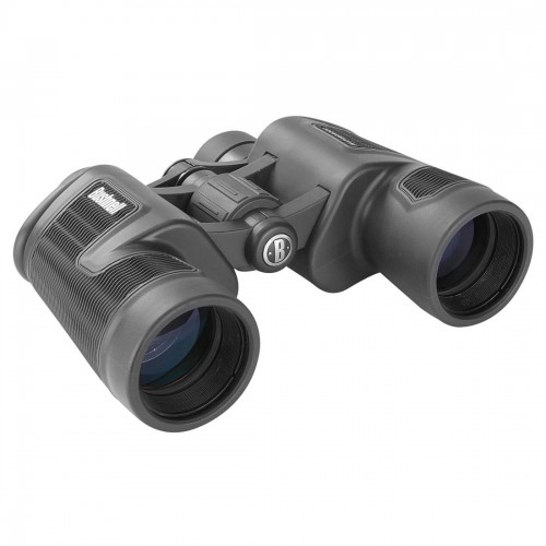 Bushnell 30X60 Binocular